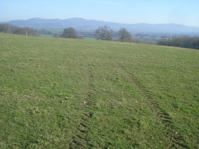 Large field at Hill Farm