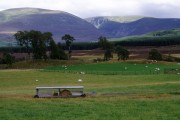 Fields at Corarnstilbeg