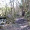 Ruined wheel pit in the woods below Comfort