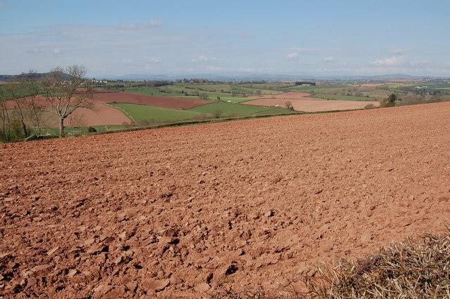 Ploughed field near Linton Hill