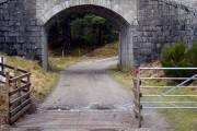 Bridge on Aviemore to Boat of Garten Railway