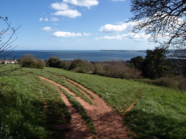 Looking towards Tor Bay from Preston Park