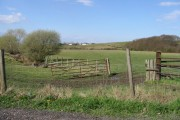 Dargate Common from Dargate Road
