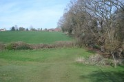 The Daffodil Way  approaching Kempley Green