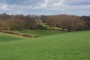 Farmland and woodland, Lane End