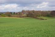 Farmland, Lane End