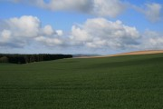 Farmland at Bolton