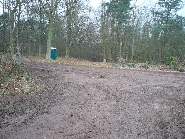 Sherwood Forest - Track Junction