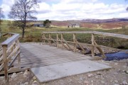 New Bridge, Rysaurie