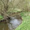 River Tern upstream of Tunstall Hall