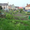 Allotments seen from Church Street