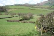 Farmland at Tan-yr-allt