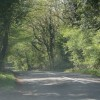 The road from Finstock to Leafield