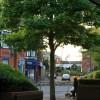 Evening scene, Long Eaton