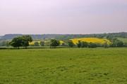 Farmland, Botany Bay Farm, Enfield