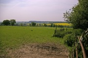 Field at Botany Bay Farm, Enfield