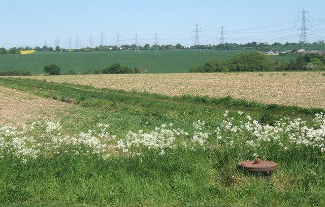 Fields near track junction, Akenham