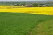 Farmland, Hawthorn Hill