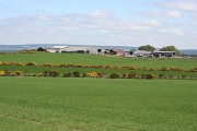 Corskie Farm