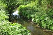 River Pinn near Cowley