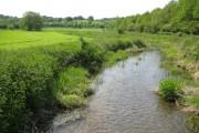 River Misbourne near Higher Denham