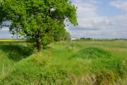 Towards Newstead Farm