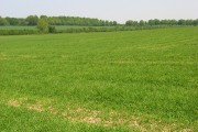 Farmland, Oakley