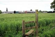 Leighton - Mile House across the barley