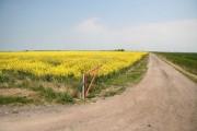 New Leake farmland