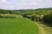 Farmland, Cole Henley
