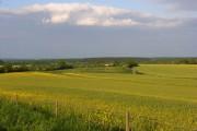 Farmland, Quarley