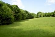 Farmland near Horeb