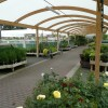 Outdoor plant area, Wyevale, Hereford
