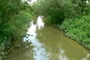 River Kennet near Clatford