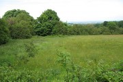 Hay meadow, Glascoed
