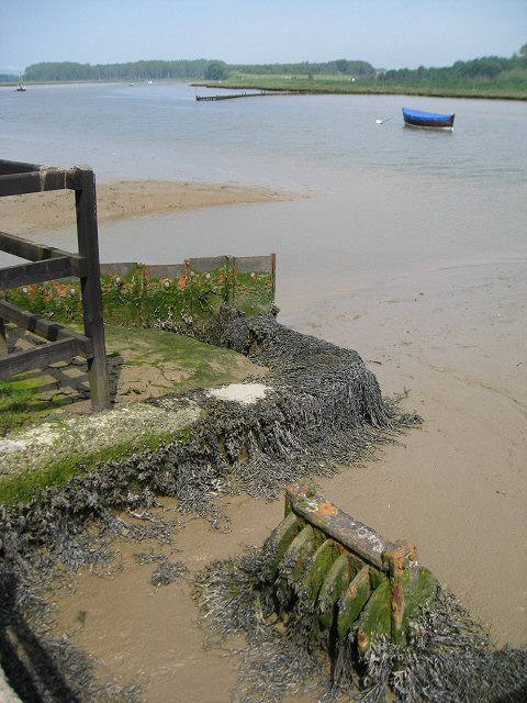 Drain outfall on the Butley River