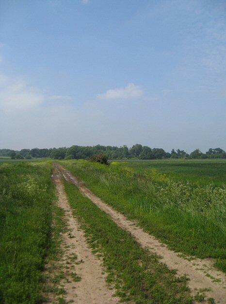 Suffolk Coastal Way