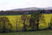 Oathlaw from the A92