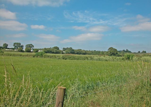 Bo-peep farm