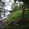 Wooded shoreline of Loch Fyne