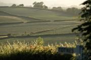 Farmland near Berry Pomeroy