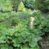 Bonsall - Cascades Garden Centre