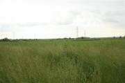 Farmland, Church Laneham (2)