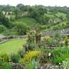 Bonsall - Open Gardens