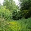 Towards Three Shire Oak