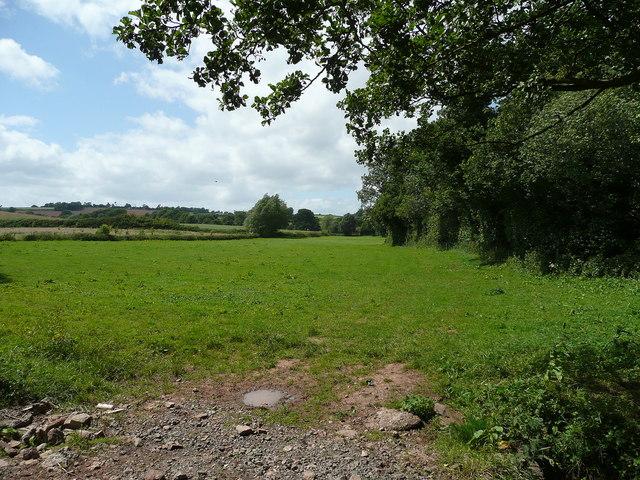 Pasture land west of Aston Ingham