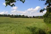 Farmland, Bisham