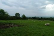 Stricegill Farm