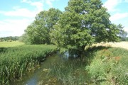 River Deben, looking upstream