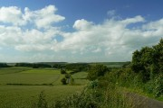 A view north from the road to Asthall, Oxfordshire